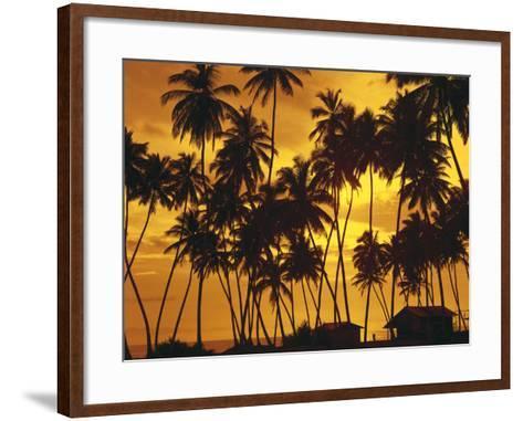 Palm Beach, Sundown-Thonig-Framed Art Print