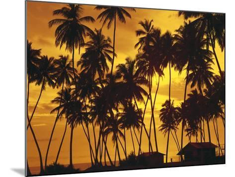 Palm Beach, Sundown-Thonig-Mounted Photographic Print