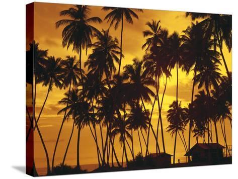 Palm Beach, Sundown-Thonig-Stretched Canvas Print