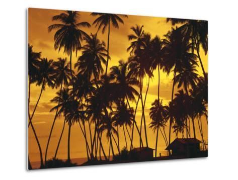 Palm Beach, Sundown-Thonig-Metal Print