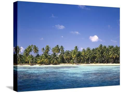 Malediven, Meer, Palmenstrand, Indischer Ozean, Palmeninsel, Detail, Strand-Thonig-Stretched Canvas Print