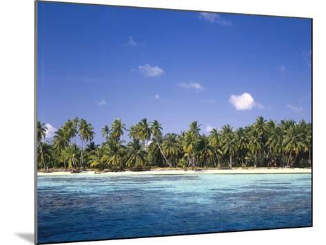 Malediven, Meer, Palmenstrand, Indischer Ozean, Palmeninsel, Detail, Strand-Thonig-Mounted Photographic Print