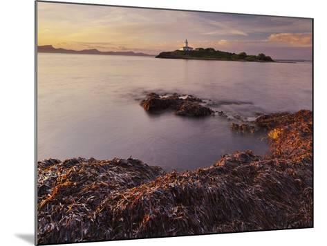 Lighthouse of Alcanada, Beach, Sea Grass, Dusk, Majorca, Spain-Rainer Mirau-Mounted Photographic Print