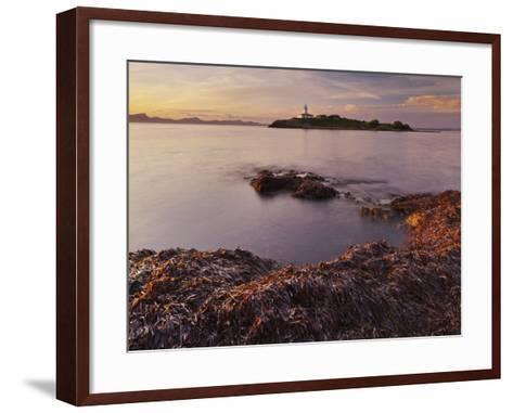Lighthouse of Alcanada, Beach, Sea Grass, Dusk, Majorca, Spain-Rainer Mirau-Framed Art Print