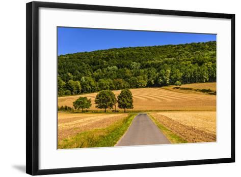 Germany, Bavaria, Lower Franconia, 'FrŠnkisches Saaletal' (Saale Valley), WolfsmŸnster-Udo Siebig-Framed Art Print