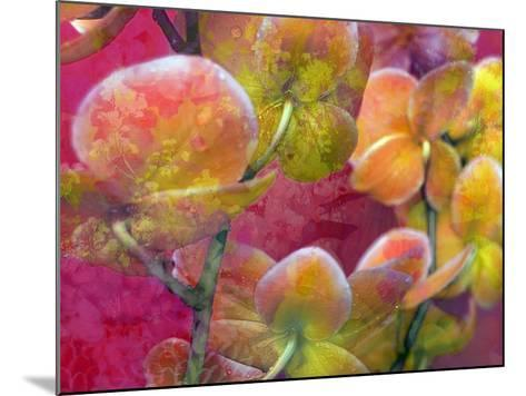 Blooming Orchids in Orange Tones Infront of Red Pink Floral Ornament Backgound-Alaya Gadeh-Mounted Photographic Print