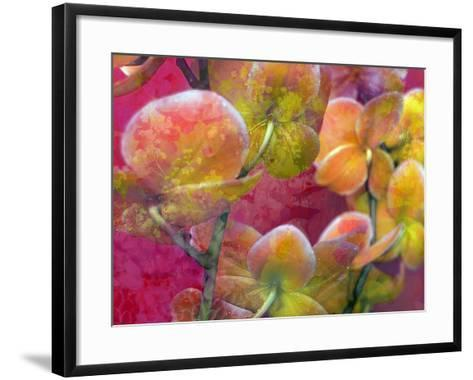 Blooming Orchids in Orange Tones Infront of Red Pink Floral Ornament Backgound-Alaya Gadeh-Framed Art Print