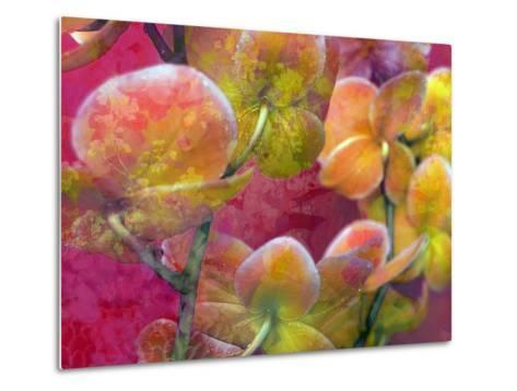 Blooming Orchids in Orange Tones Infront of Red Pink Floral Ornament Backgound-Alaya Gadeh-Metal Print