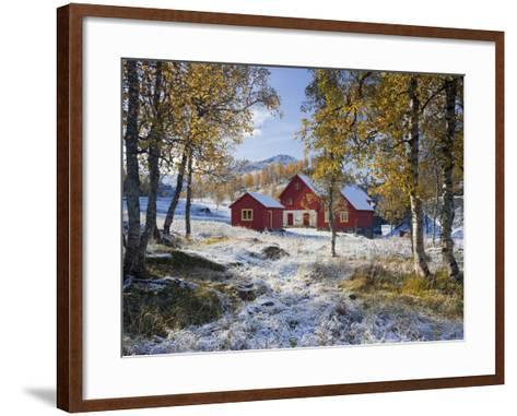 Norway, Valldalen, Farm, Birches, Late Autumn-Rainer Mirau-Framed Art Print