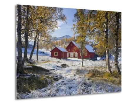 Norway, Valldalen, Farm, Birches, Late Autumn-Rainer Mirau-Metal Print