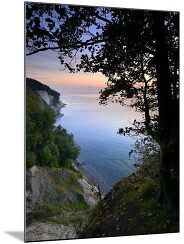 Chalk Rocks, Sunrise, National Park Jasmund, Island RŸgen, Mecklenburg-West Pomerania, Germany-Andreas Vitting-Mounted Photographic Print