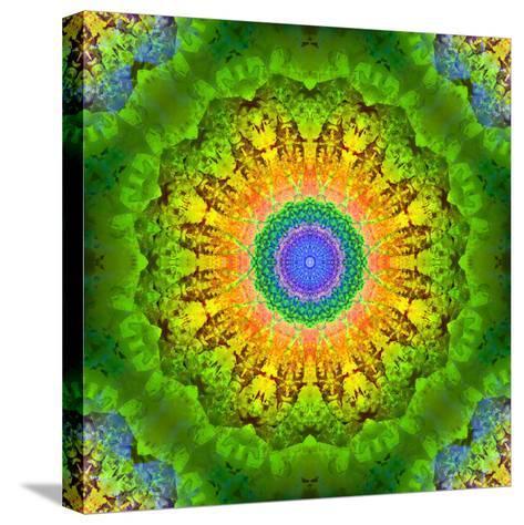 Mandala Ornament of Flowers, Composing-Alaya Gadeh-Stretched Canvas Print