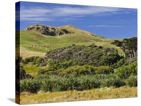 Wharariki, Tasman, South Island, New Zealand-Rainer Mirau-Stretched Canvas Print