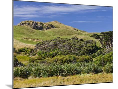 Wharariki, Tasman, South Island, New Zealand-Rainer Mirau-Mounted Photographic Print