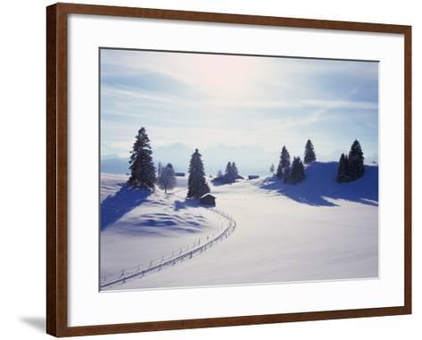 Germany, Bavaria, AllgŠu, Snow Scenery, Back Light, Alps, Mountains, Loneliness, Mountains, Winter-Herbert Kehrer-Framed Art Print