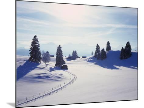 Germany, Bavaria, AllgŠu, Snow Scenery, Back Light, Alps, Mountains, Loneliness, Mountains, Winter-Herbert Kehrer-Mounted Photographic Print