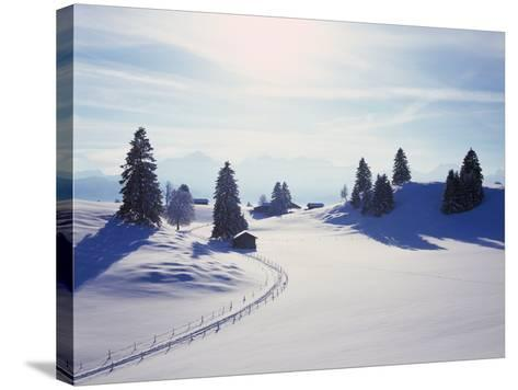 Germany, Bavaria, AllgŠu, Snow Scenery, Back Light, Alps, Mountains, Loneliness, Mountains, Winter-Herbert Kehrer-Stretched Canvas Print