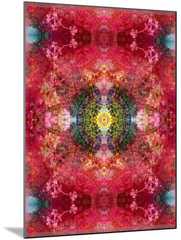 An Energetic Symmetric Onament from Flower Photographs-Alaya Gadeh-Mounted Photographic Print