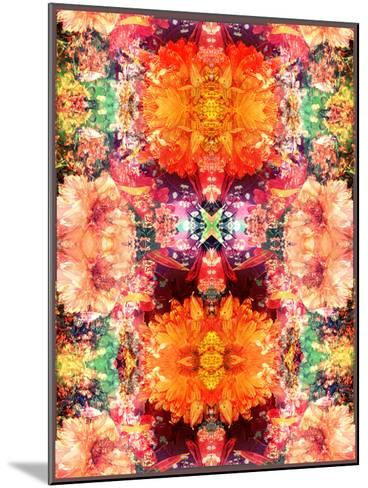 A Symmetric Colorful Ornament from Flowers, Photographic Layer Work-Alaya Gadeh-Mounted Photographic Print