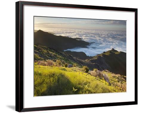 View of Terxeira to Canario, Sea of Clouds, Madeira, Portugal-Rainer Mirau-Framed Art Print