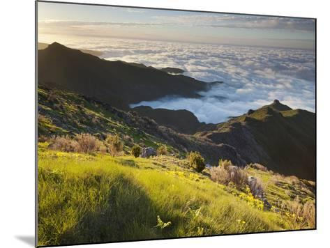 View of Terxeira to Canario, Sea of Clouds, Madeira, Portugal-Rainer Mirau-Mounted Photographic Print