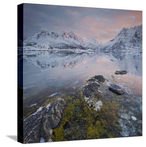Shore with Sildpollneset (Peninsula), Vestpollen, Austnesfjorden-Rainer Mirau-Stretched Canvas Print
