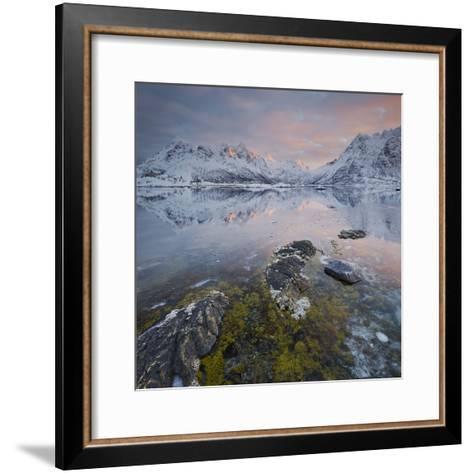 Shore with Sildpollneset (Peninsula), Vestpollen, Austnesfjorden-Rainer Mirau-Framed Art Print