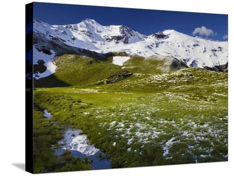 PetersbrŸndl, Glockner Group, Hohe Tauern National Park, Salzburg, Austria-Rainer Mirau-Stretched Canvas Print