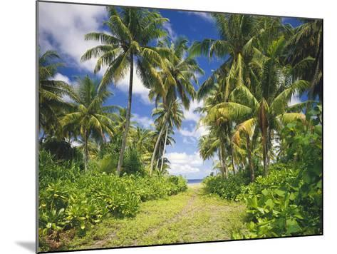 Maldives, Coconut Palms-Thonig-Mounted Photographic Print