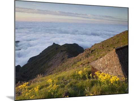 Resting Place with Terxeira, Sea of Clouds, Madeira, Portugal-Rainer Mirau-Mounted Photographic Print