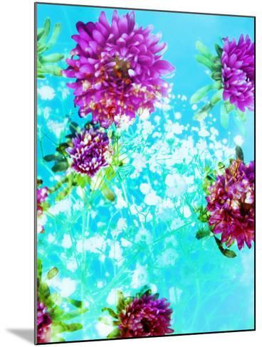Composing of Mauve Blossoms in Blue Water with White Flowering Branches-Alaya Gadeh-Mounted Photographic Print