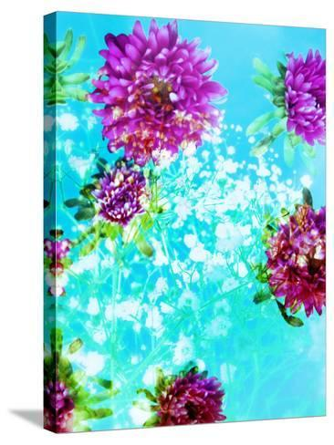 Composing of Mauve Blossoms in Blue Water with White Flowering Branches-Alaya Gadeh-Stretched Canvas Print