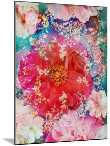 Red Blooming Rose Blossom with Cherry Blossoms Ornaments from Spring Trees-Alaya Gadeh-Mounted Photographic Print