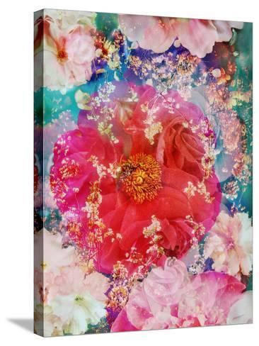 Red Blooming Rose Blossom with Cherry Blossoms Ornaments from Spring Trees-Alaya Gadeh-Stretched Canvas Print