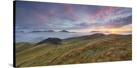 Morning Mood, Sheep Pasture, Wharariki, Tasman, South Island, New Zealand-Rainer Mirau-Stretched Canvas Print