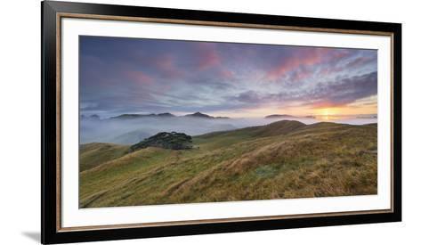 Morning Mood, Sheep Pasture, Wharariki, Tasman, South Island, New Zealand-Rainer Mirau-Framed Art Print