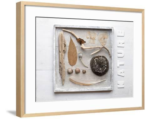 Still Life, Frames, Collection, Natural Materials-Andrea Haase-Framed Art Print
