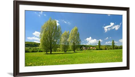 Spring in the Unstruttal, Poplars on Meadow with Dandelion, Near Freyburg-Andreas Vitting-Framed Art Print