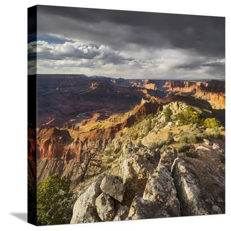 Lipan Point, South Rim, Grand Canyon National Park, Arizona, Usa-Rainer Mirau-Stretched Canvas Print