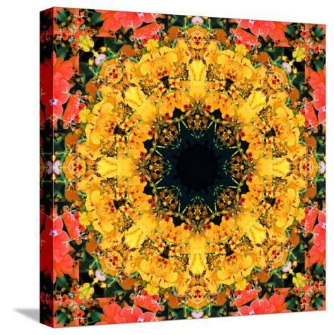 Montage of Flower Photographies, Orchids in a Symmetrical Ornament, Mandala-Alaya Gadeh-Stretched Canvas Print