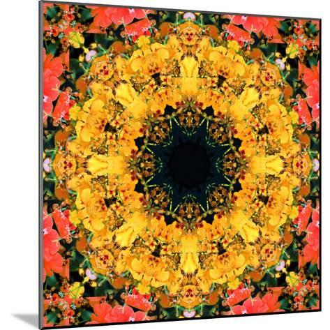 Montage of Flower Photographies, Orchids in a Symmetrical Ornament, Mandala-Alaya Gadeh-Mounted Photographic Print