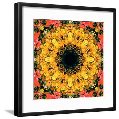 Montage of Flower Photographies, Orchids in a Symmetrical Ornament, Mandala-Alaya Gadeh-Framed Art Print
