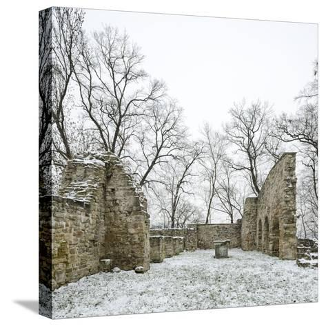Germany, Saxony-Anhalt, Saale-Holzland-Kreis, Camburg, Ruin of the Cyriaks Church in Winter-Andreas Vitting-Stretched Canvas Print