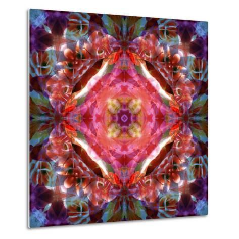 Mandala Ornament from Flower Photographs-Alaya Gadeh-Metal Print