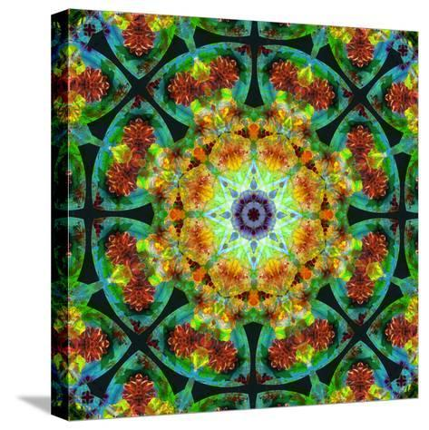 Photomontage of Flowers in a Symmetrical Ornament, Mandala-Alaya Gadeh-Stretched Canvas Print