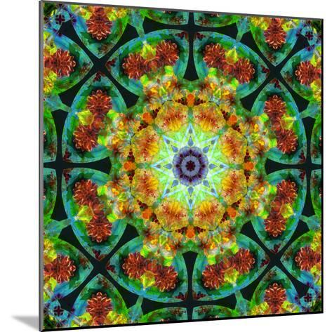Photomontage of Flowers in a Symmetrical Ornament, Mandala-Alaya Gadeh-Mounted Photographic Print