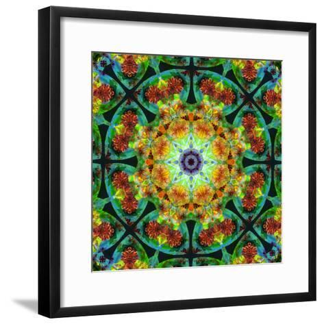 Photomontage of Flowers in a Symmetrical Ornament, Mandala-Alaya Gadeh-Framed Art Print