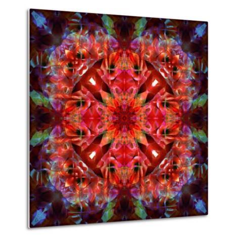 Mandala Ornament from Flower Photographs-Alaya Gadeh-Metal Print