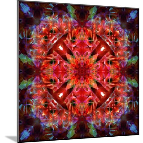 Mandala Ornament from Flower Photographs-Alaya Gadeh-Mounted Photographic Print