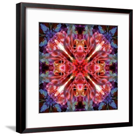 Mandala Ornament from Flower Photographs-Alaya Gadeh-Framed Art Print